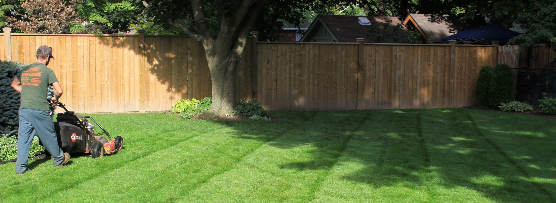 Lawn services al 39 s lawn garden chatham kent for Lawn and garden services
